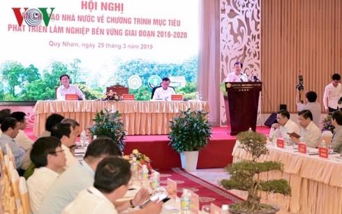 ズン副首相:森林の価値の向上に努力する - ảnh 1