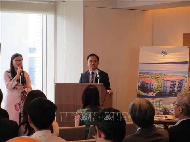 ベトナムと日本との観光発展の潜在力 - ảnh 1