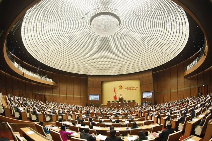 第14期国会第7回会議が始まる(2) - ảnh 1