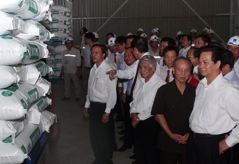 Prime Minister Nguyen Tan Dung visits Ca Mau Urea Plant - ảnh 1