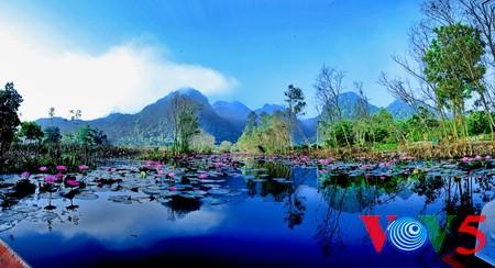 阿根廷媒体赞扬越南旅游魅力 - ảnh 1