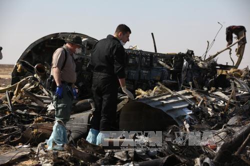 美国:无直接证据显示俄客机失事涉恐袭 - ảnh 1