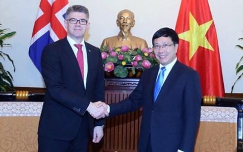 越南政府副总理兼外长范平明会见冰岛外交与外贸部长及比利时参议院议长 - ảnh 1