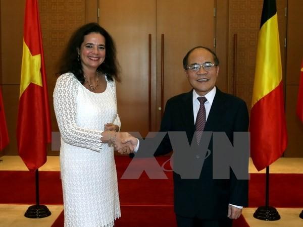 比利时联邦参议院议长德弗莱涅结束对越南的正式访问 - ảnh 1