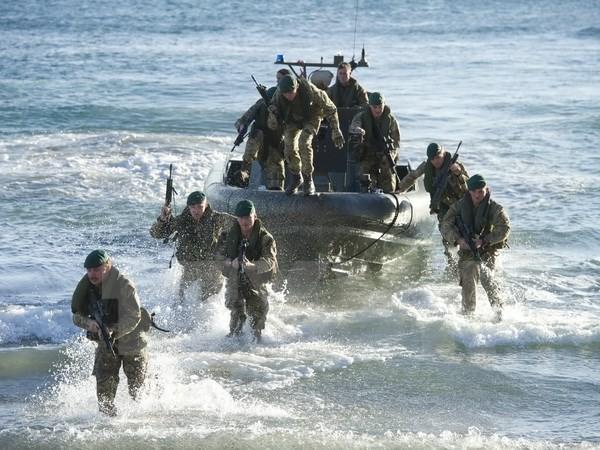 英国希望与海湾国家扩大军事合作 - ảnh 1