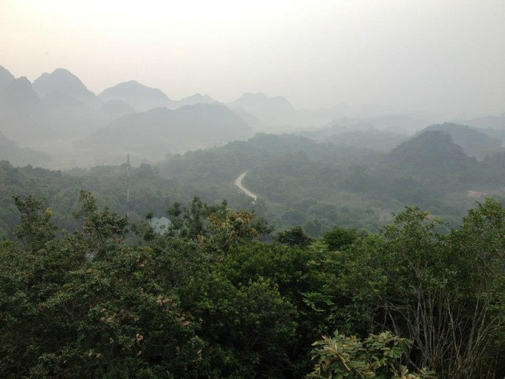 提高越南农场和林场土地管理与使用效果 - ảnh 1