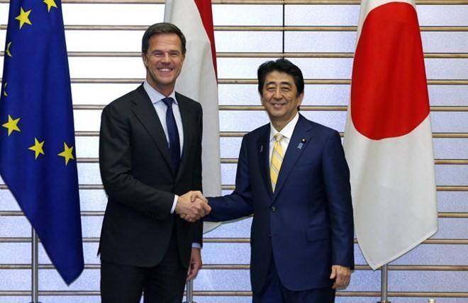 日本与荷兰均对东海紧张局势表示关切 - ảnh 1