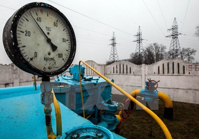 伊朗与伊拉克签署第二份天然气供应合同 - ảnh 1