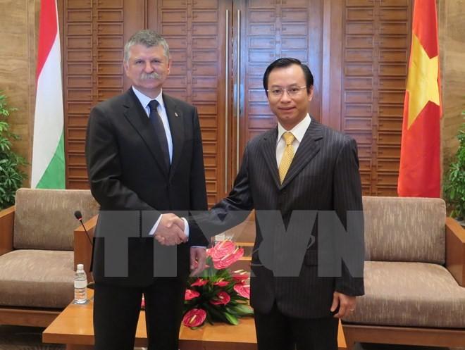 匈牙利国会代表团访问岘港市 - ảnh 1