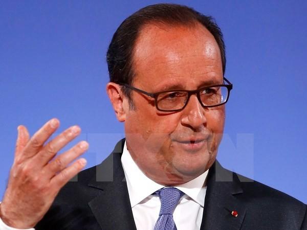 法国总统奥朗德对越南进行国事访问 - ảnh 1