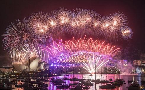 世界各地人民举行多项大型活动喜迎新年 - ảnh 2