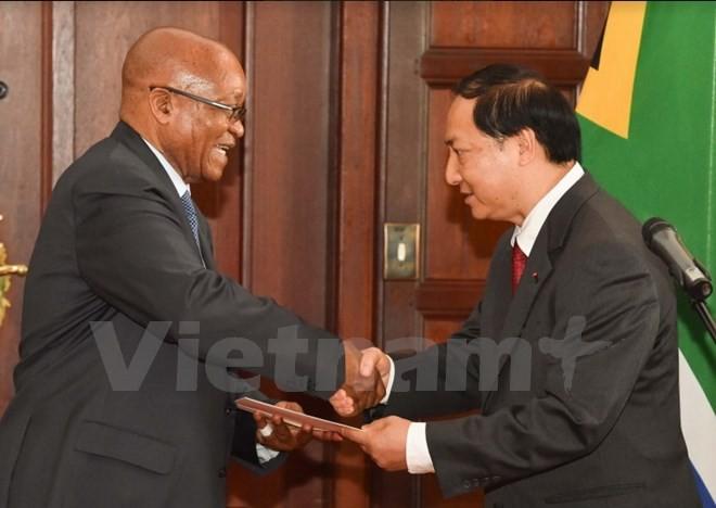 越南驻南非大使递交国书 - ảnh 1