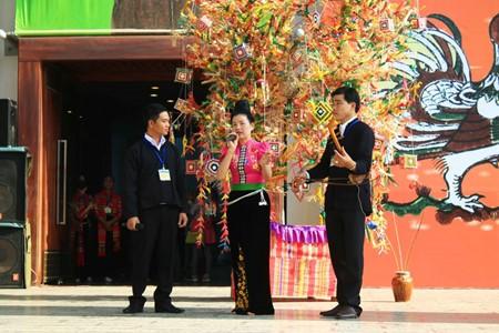 在越南民族学博物馆体验西北文化 - ảnh 1