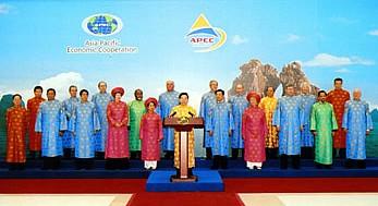 为亚太经合组织成员经济体保障贸易安全和创造便利条件 - ảnh 1