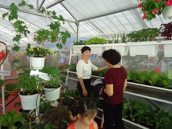 胡志明市举行第五次农业种苗展 - ảnh 1