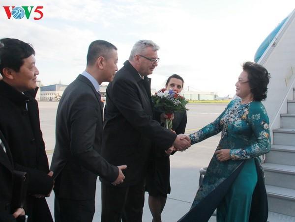 阮氏金银对捷克进行正式访问 - ảnh 1