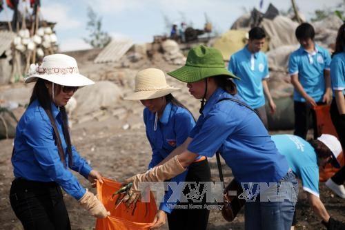 2017年越南海洋岛屿周即将举行 - ảnh 1