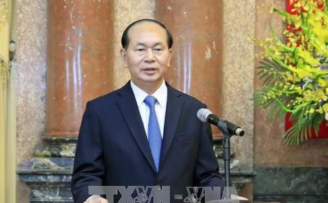 陈大光:越南2017 年APEC会议——在变革世界中开创共享未来 - ảnh 1