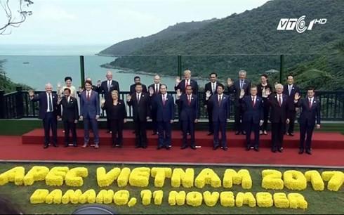 2017年APEC系列会议取得的成功给我国注入新动力 - ảnh 1