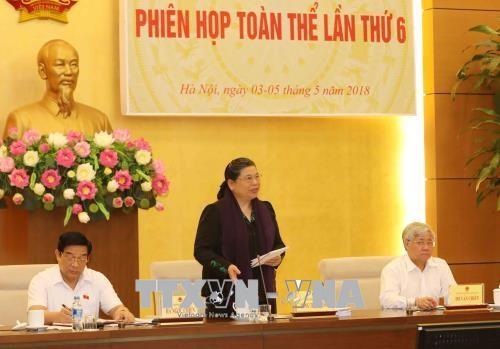 越南国会民族委员会第六次全体会议开幕 - ảnh 1