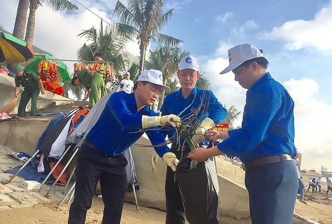 """近500名青年团员参加""""绿色越南海洋""""活动 - ảnh 1"""