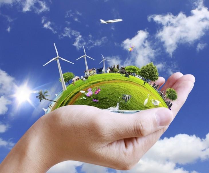 响应世界环境日:多国驻越大使馆和国际组织将签署有关防止塑料废物污染的行为准则 - ảnh 1
