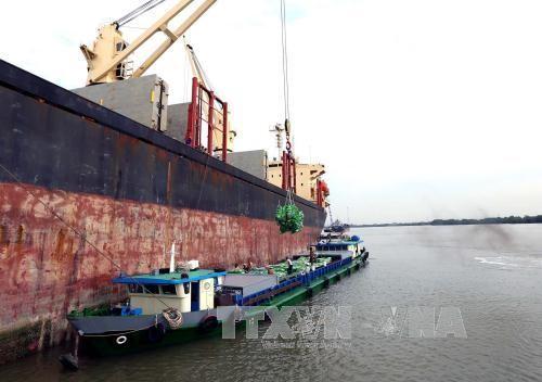 越南今年头五个月出口额增长可观 - ảnh 1
