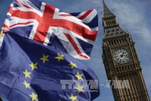 英脱欧:数千英国民众示威游行  呼吁对英国脱欧协议进行最终公投 - ảnh 1