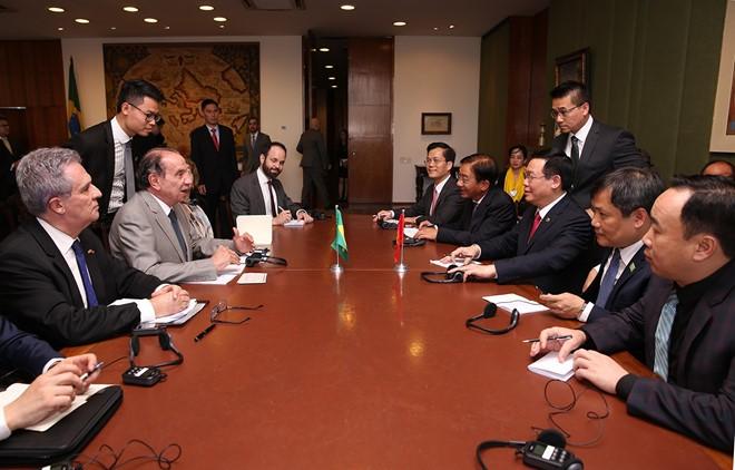 王庭惠对巴西进行正式访问 - ảnh 1