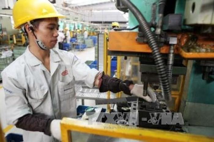 推进国内企业与外资企业的技术转移 - ảnh 1