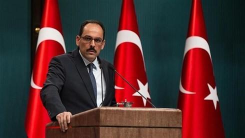 美国与土耳其关系面临挑战 - ảnh 1
