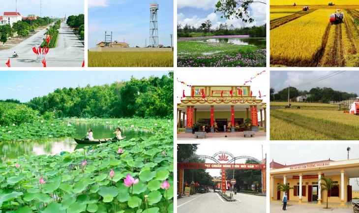 越南农业与农村发展部举行服务新农村建设的科技计划全国会议 - ảnh 1
