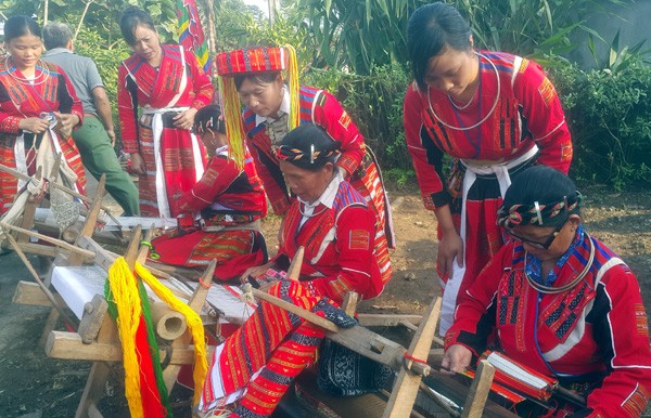 巴天族妇女服装上的精致花纹 - ảnh 1