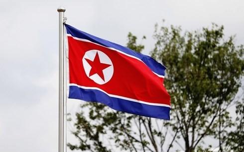 朝鲜驱逐一名日本公民 - ảnh 1