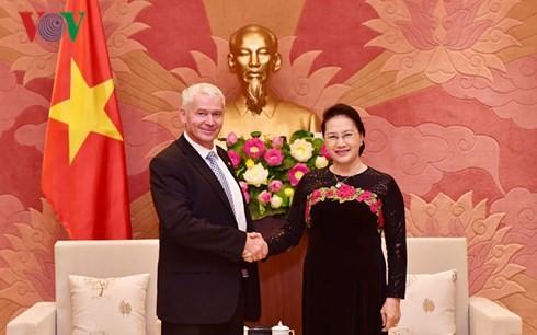 越南国会主席阮氏金银会见匈牙利最高检察院检察长博尔特•彼得 - ảnh 1