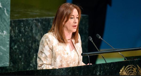 第73届联合国大会提出7点优先行动 - ảnh 1
