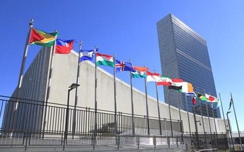 联合国继续强调其在国际新背景下的作用 - ảnh 1