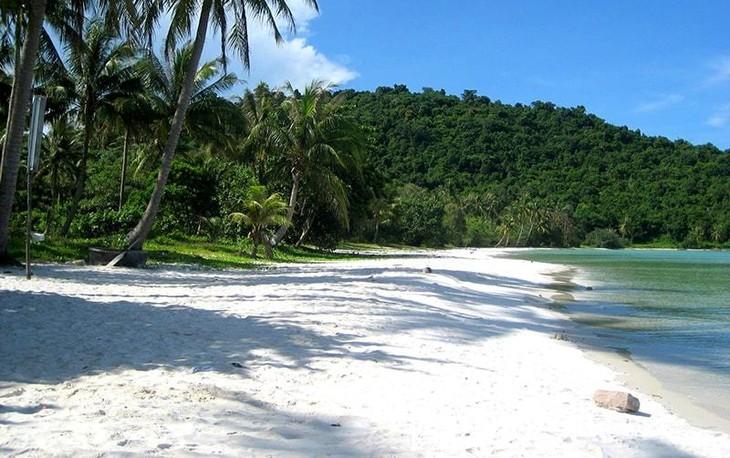 美丽的富国岛海星滩 - ảnh 1
