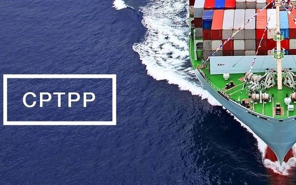 CPTPP 成为联结太平洋两岸经济的桥梁 - ảnh 1