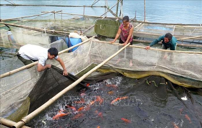 越南努力开展地区消饥减贫工作 - ảnh 2