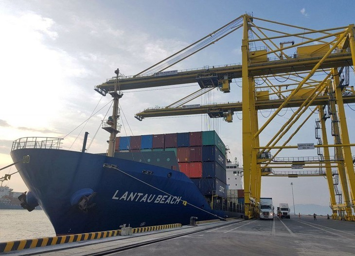 岘港港新增至日本的海运航线 - ảnh 1