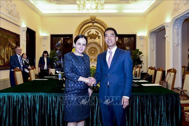 越南-罗马尼亚政治磋商会议在河内举行 - ảnh 1