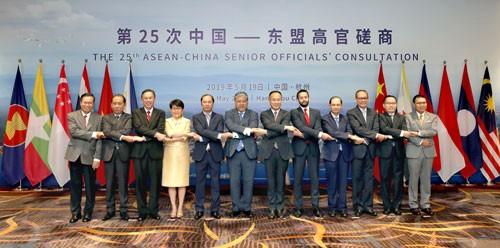 第25次中国—东盟高官磋商在杭州举行 - ảnh 1