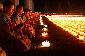 越南佛教教会与保护自然资源和生物多样性工作 - ảnh 1