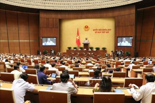 越南第14届国会第7次会议进入第三周 - ảnh 1