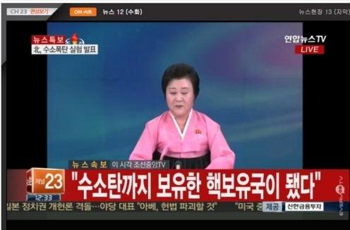 Banyak negara mencemaskan pengumuman RDR Korea tentang uji  bom hidrogen - ảnh 1