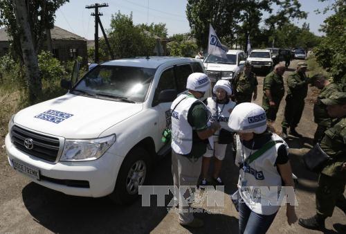 Terjadi lagi tembakan yang menyasar para pengamat OSCE di Ukraina Timur - ảnh 1