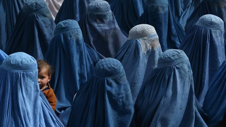 Danemark: Interdiction officielle du port de la burqa dans l'espace public - ảnh 1