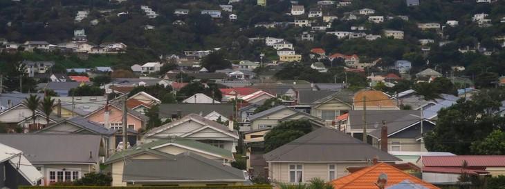 La Nouvelle-Zélande interdit la vente de maisons aux étrangers - ảnh 1