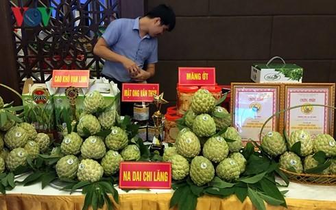 Conférence sur les échanges de produits agricoles entre le Vietnam et la Chine  - ảnh 1
